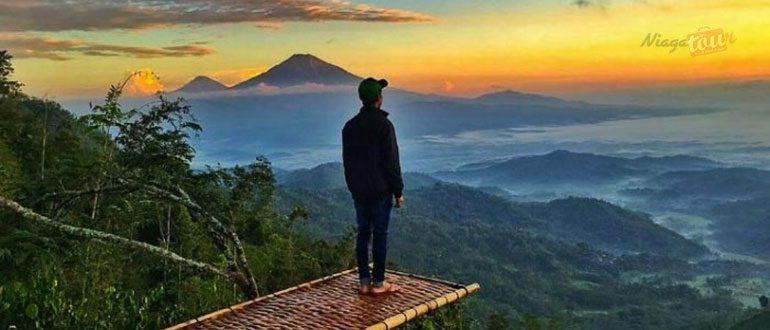 Destinasi Wisata Alam Terfavorit Bukit Isis Kulon Progo