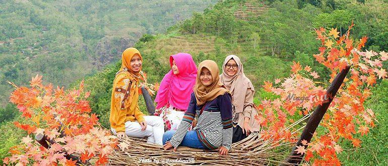 Wisata Alam Bukit Mojo Gumelem. Spot Foto Kekinian di Mangunan