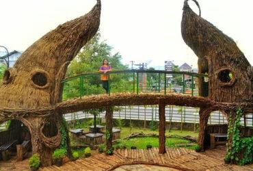 Selfie Park, Selfie Alam Unik Dan Menarik Di Tengah Kota Jogja