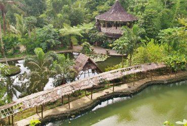 Desa Wisata Pentingsari, Wisata Alam Sekaligus Budaya dengan Kearifan Lokalnya